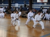 karate-gold_team_1